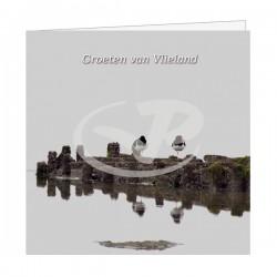 Wenskaart Vlieland Scholeksters op Strekdam