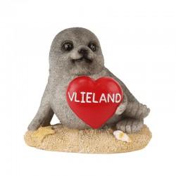 Zeehond Op Zandplaat Met Hart Vlieland