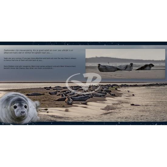 Zeehonden - Dieren van de Waddenzee Deel 1