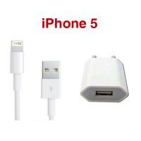 iPhone Thuislader + Lightning naar USB kabel 1 meter