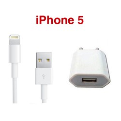 iPhone Thuislader + Lightning naar USB kabel 1 meter